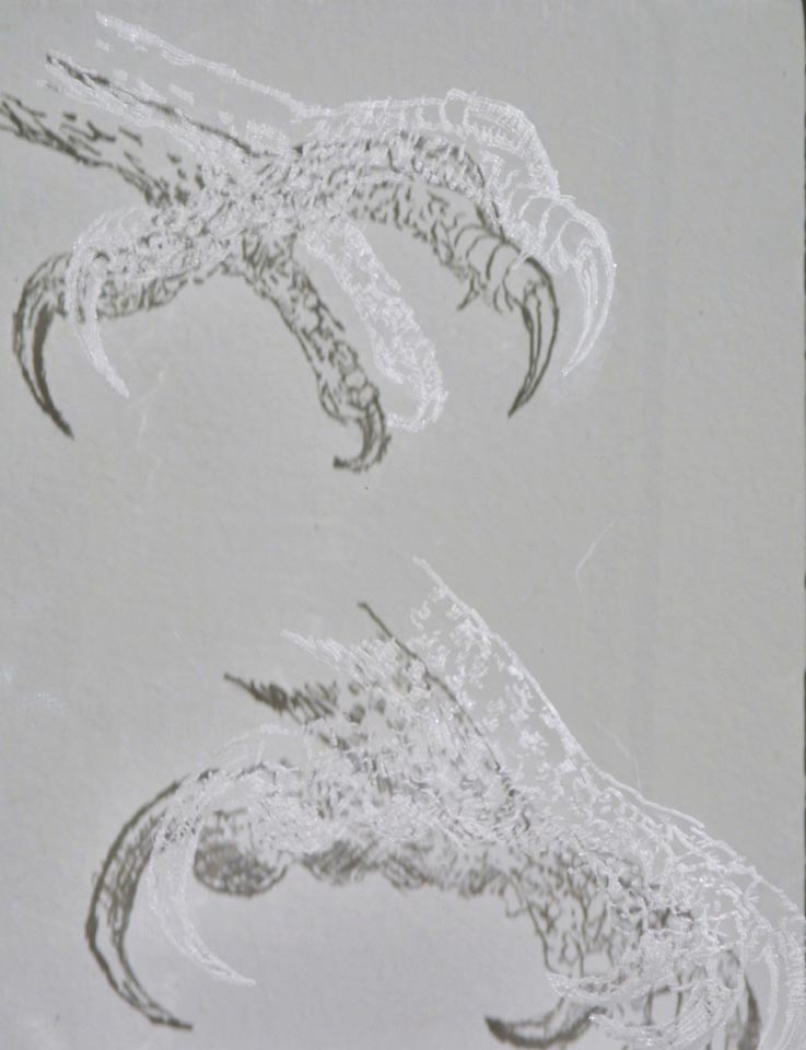 """Claws"", engraved glass slide, 15 x 10cm"